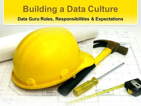 Building a Data Culture Data Guru Roles, Responsibilities & Expectations.