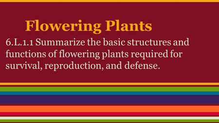 Flowering Plants 6.L.1.1 Summarize the basic structures and functions of flowering plants required for survival, reproduction, and defense.
