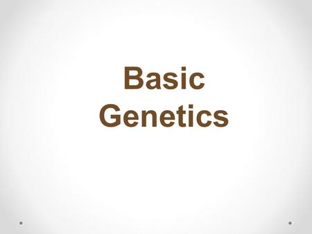 Basic Genetics *. View video at: https://www.youtube.com/watch?v=YxKFdQo10rE.
