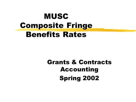 MUSC Composite Fringe Benefits Rates Grants & Contracts Accounting Spring 2002.