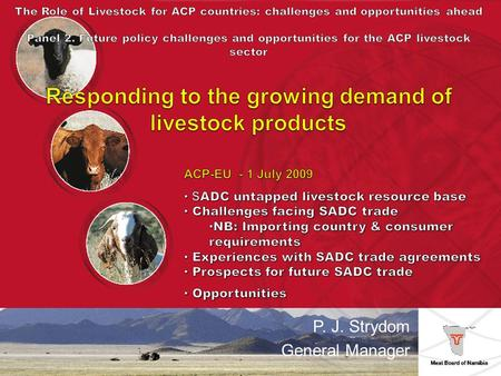 P. J. Strydom General Manager. Cattle 171 000 weaners (8 month; 180 – 240kg) South African feedlots 115 000 steers – EU export abattoirs (Meatco & Witvlei)