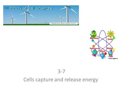 3-7 Cells capture and release energy