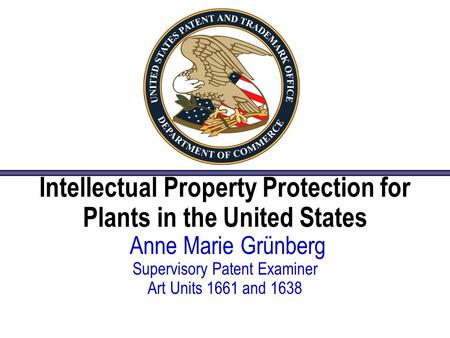 Intellectual Property Protection for Plants in the United States Anne Marie Grünberg Supervisory Patent Examiner Art Units 1661 and 1638.