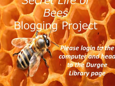 Secret Life of Bees Blogging Project Secret Life of Bees Blogging Project Please login to the computer and head to the Durgee Library page.