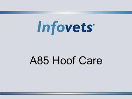 A85 Hoof Care. Infovets Educational Resources – www.infovets.com – Slide 2 Introduction  The old adage no hoof no horse is very true.  As a horse owner,