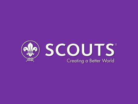 THE EUROPEAN SCOUT REGION Dr. Andrea Demarmels Chairperson, European Scout Committee.