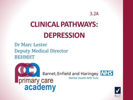 CLINICAL PATHWAYS: DEPRESSION