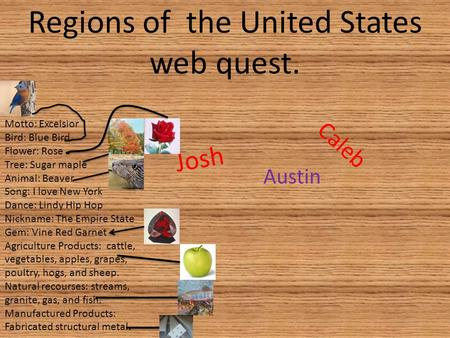Regions of the United States web quest. Caleb Austin Josh Motto: Excelsior Bird: Blue Bird Flower: Rose Tree: Sugar maple Animal: Beaver Song: I love New.