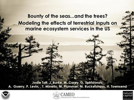 Bounty of the seas...and the trees? Modeling the effects of terrestrial inputs on marine ecosystem services in the US Jodie Toft, J. Burke, M. Carey, G.