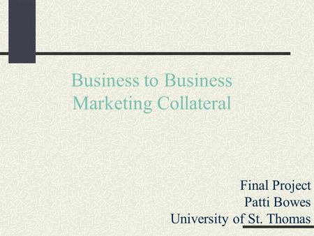 Business to Business Marketing Collateral Final Project Patti Bowes University of St. Thomas.