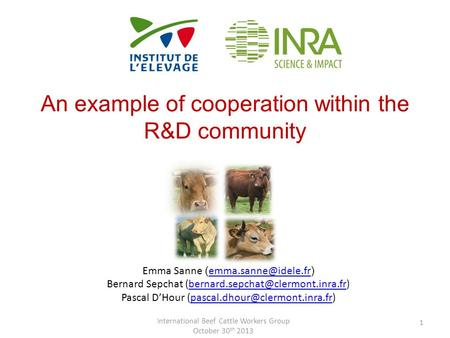 An example of cooperation within the R&D community International Beef Cattle Workers Group October 30 th 2013 1 Emma Sanne ( )