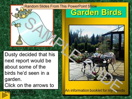 www.ks1resources.co.uk Garden Birds An information booklet for my friends Dusty decided that his next report would be about some of the birds he'd seen.