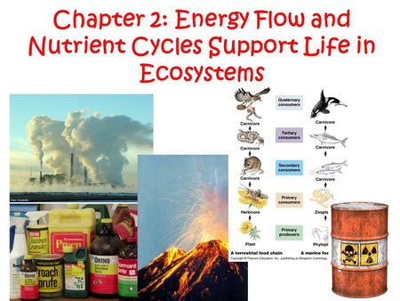 Chapter 2: Energy Flow and Nutrient Cycles Support Life in Ecosystems
