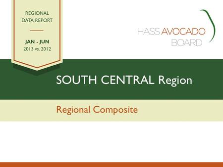SOUTH CENTRAL Region Regional Composite REGIONAL DATA REPORT JAN - JUN 2013 vs. 2012.
