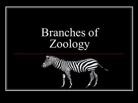 Branches of biology agronomy the study of crops and the for Soil zoology