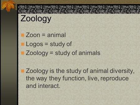 Zoology Zoon = animal Logos = study of Zoology = study of animals Zoology is the study of animal diversity, the way they function, live, reproduce and.