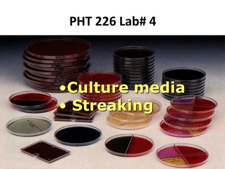 PHT 226 Lab# 4 Culture mediaCulture media Streaking Streaking.
