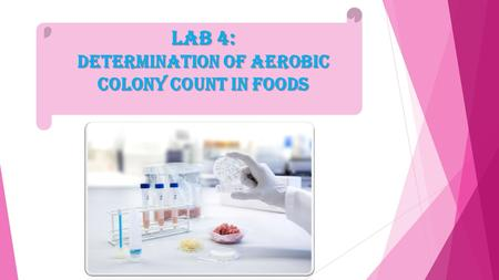 Lab 4: Determination of Aerobic colony count in Foods.