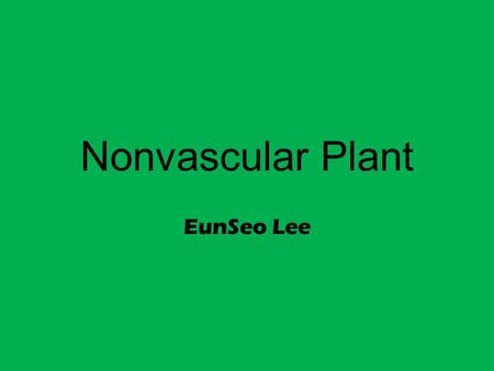 Nonvascular Plant EunSeo Lee. Nonvascular Plant definition A group of plants that do not have a vascular system(xylem and phloem) ☞ Xylem: a vascular.