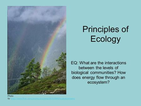 Principles of Ecology EQ: What are the interactions between the levels of biological communities? How does energy flow through an ecosystem? Photo by