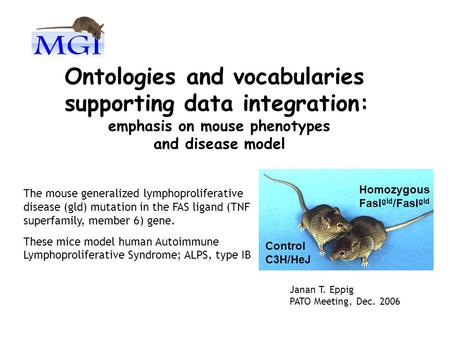 Ontologies and vocabularies supporting data integration: emphasis on mouse phenotypes and disease model Control C3H/HeJ Homozygous Fasl gld /Fasl gld The.