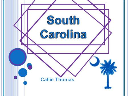 Capital : Columbia S OUTH C AROLINA INFORMATION State Symbols Flower: Carolina yellow Jessamine Tree: palmetto tree (1939) Bird: Carolina wren (1948.