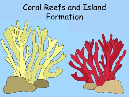 Coral Reefs and Island Formation. How old are today's reefs?