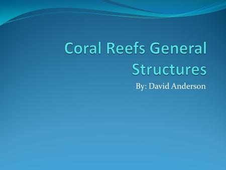 By: David Anderson. Structure of a Coral Each coral is lined with multiple polyps which are individual animals that make up the coral. Each polyp has.