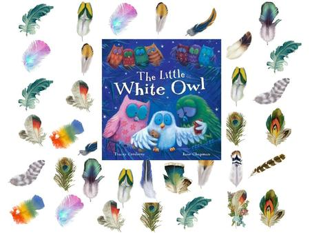 "Vocabulary ""The Little White Owl"" Objectives Assessment."