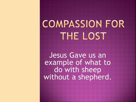 Jesus Gave us an example of what to do with sheep without a shepherd.