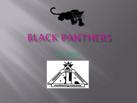By: Devin.  The Black panther party was a U.S. militant party  They were founded by Huey Newton because he was inspired by Malcom X.