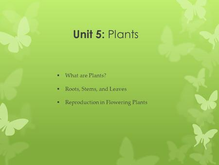 Unit 5: Plants What are Plants? Roots, Stems, and Leaves