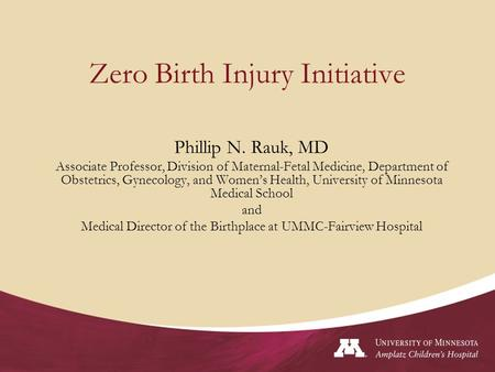 Zero Birth Injury Initiative Phillip N. Rauk, MD Associate Professor, Division of Maternal-Fetal Medicine, Department of Obstetrics, Gynecology, and Women's.