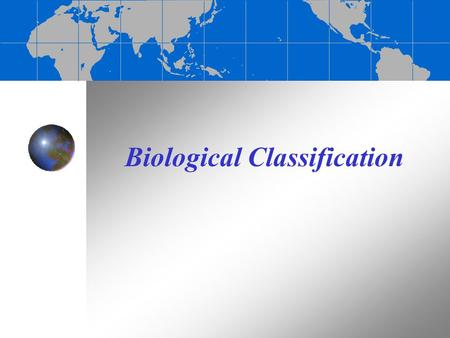 Biological Classification. The diversity of marine life The ocean is home to a wide variety of organisms Marine organisms range from microscopic bacteria.
