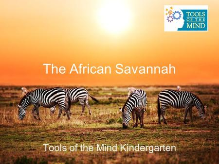 The African Savannah Tools of the Mind Kindergarten.