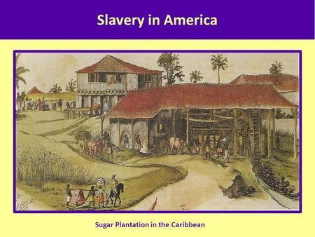 Slavery in America Sugar Plantation in the Caribbean.