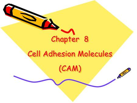 Chapter 8 Cell Adhesion Molecules (CAM)