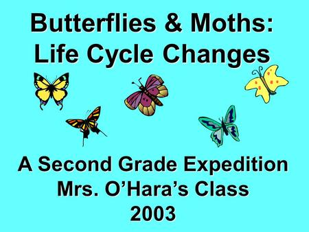 Butterflies & Moths: Life Cycle Changes A Second Grade Expedition Mrs. O'Hara's Class 2003.