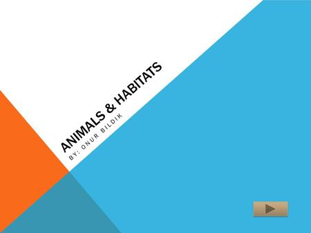 ANIMALS & HABITATS BY: ONUR BILDIK. TEACHER INFORMATION Science 2 nd Grade The purpose of this activity is to help students to identify animals. The student.