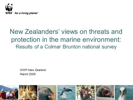 1 New Zealanders' views on threats and protection in the marine environment: Results of a Colmar Brunton national survey WWF-New Zealand March 2005.