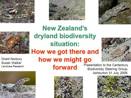 New Zealand's dryland biodiversity situation: How we got there and how we might go forward Presentation to the Canterbury Biodiversity Steering Group,