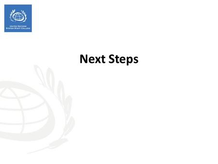 Next Steps. Session objectives -Identify entry points and practical steps to apply HRBA-RBM to the planned UNDAF process - Give the UNCT an opportunity.