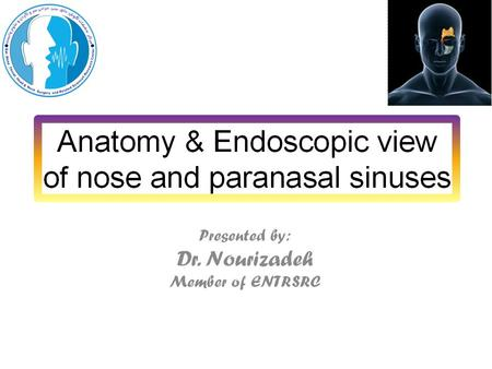 Anatomy The lateral wall of nose: Maxillary bone Ethmoid bone