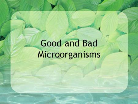 Good and Bad Microorganisms. Review What is the role of decomposers in the food chain? What are three different types of decomposers? VIDEO.