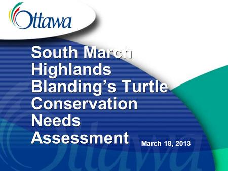 South March Highlands Blanding's Turtle Conservation Needs Assessment March 18, 2013.