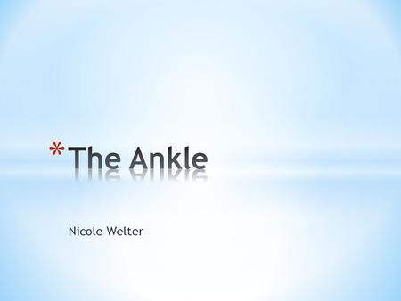 Nicole Welter. * Ligaments of the medial aspect of the foot. * Is a strong, flat, triangular band, attached, above, to the apex and anterior and posterior.