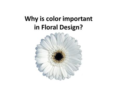 Why is color important in Floral Design?. What is the purpose? Provokes emotion What emotions are flowers associated with?