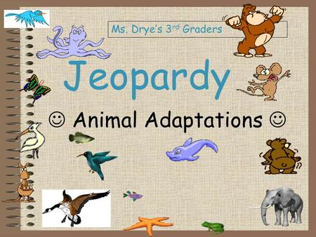 Jeopardy Animal Adaptations Ms. Drye's 3 rd Graders.