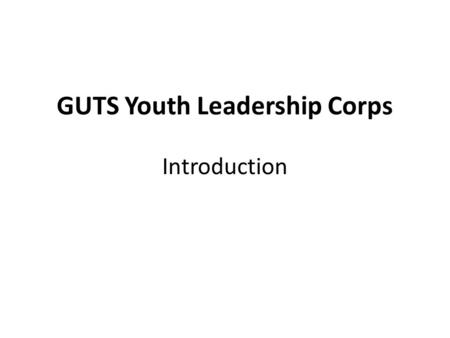 GUTS Youth Leadership Corps Introduction. Normal Mentoring Program Elementary School Middle School High School Adults GUTS Clubs Girl Scouts Girls Inc.