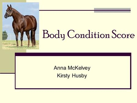 Body Condition Score Anna McKelvey Kirsty Husby. Henneke Body Condition Score Measures amount of body fat Determines balance between energy intake & expenditure.